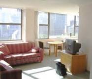 Apartment Living Room - Hyde Park Plaza 1102